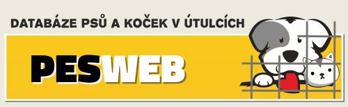 logo pesweb